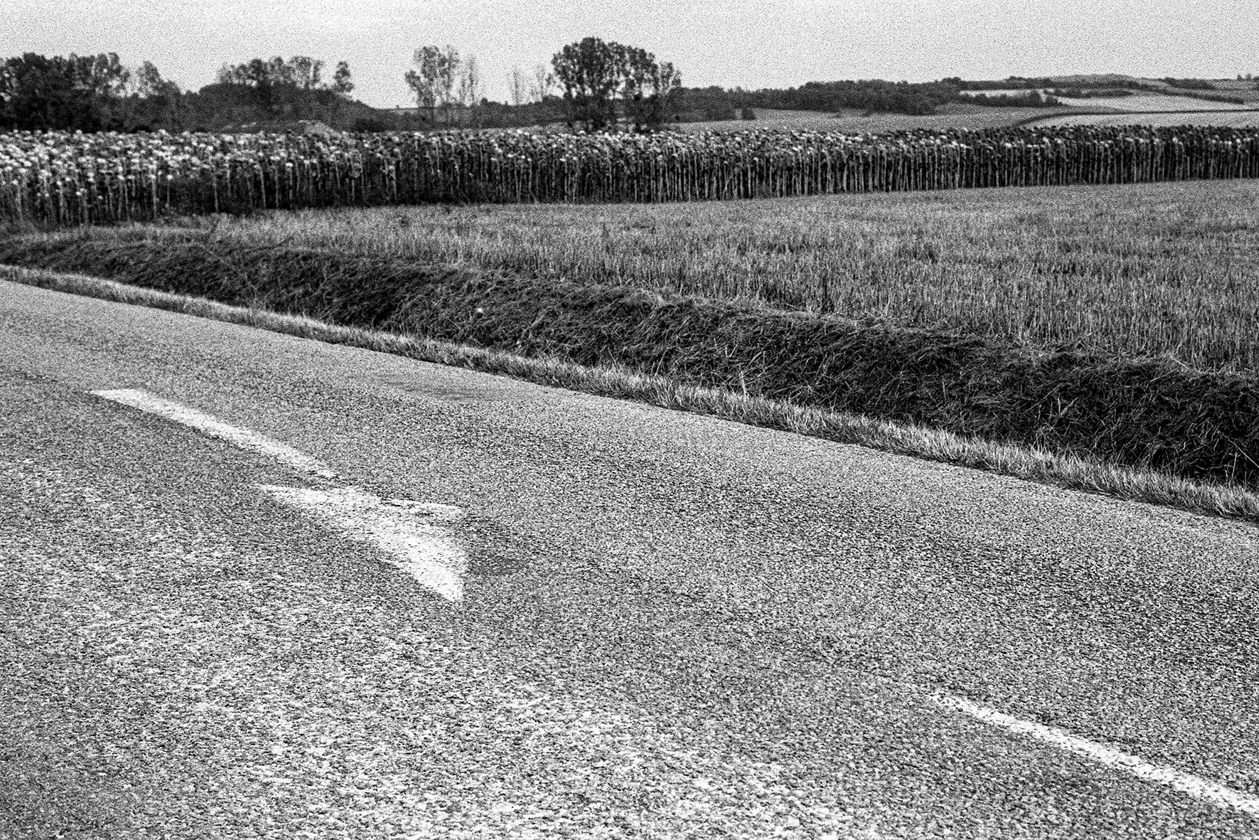 Photographe : Taking the country roads n°12