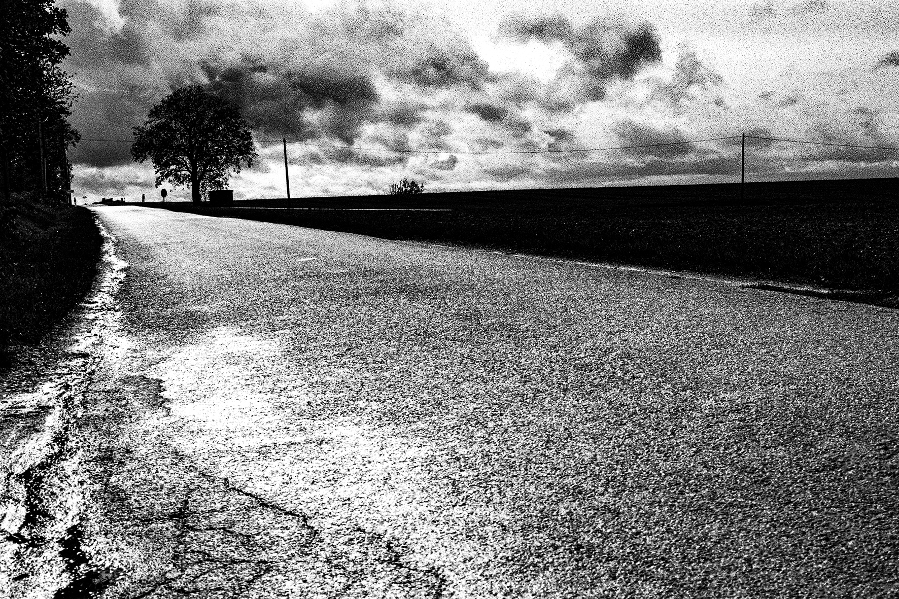 Photographe : Taking the country roads n°18